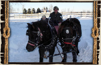 Winter at Fruit Ridge Hayrides